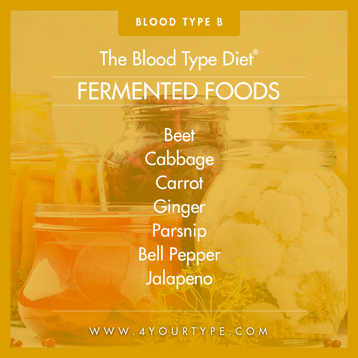 Blood Type B - Fermented Foods