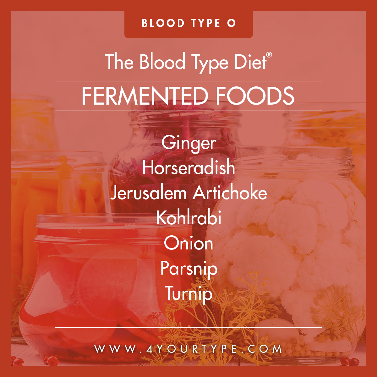 Blood Type O - Fermented Foods