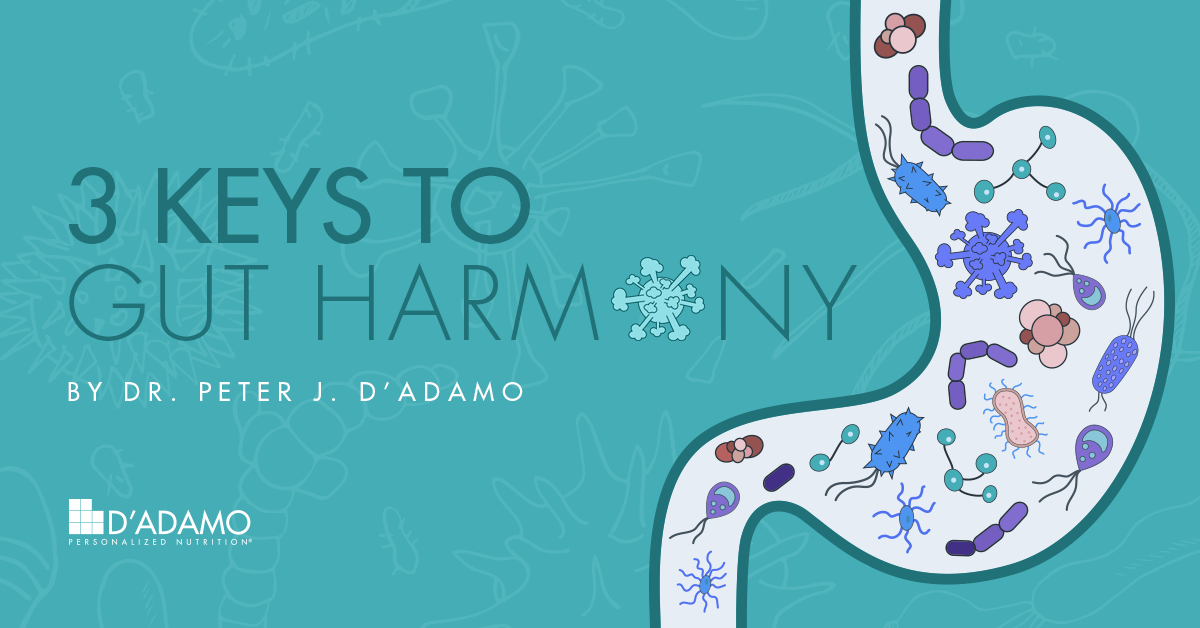 3 Keys to Gut Harmony by Dr. Peter J. D'Adamo