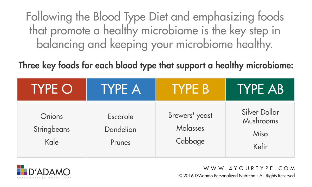 Blood Type Microbiome Food Chart