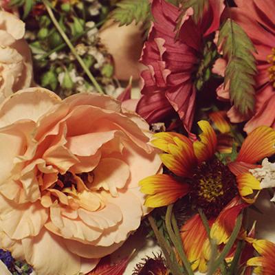 November Gratitude by Martha D'Adamo