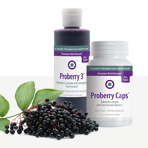 Elderberry antioxidants