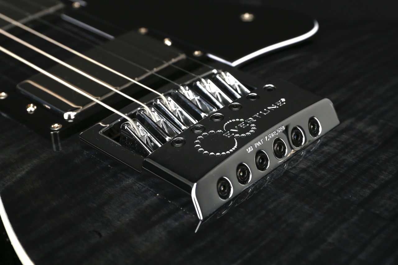 ESP LTD BW-1 Ben Weinman Signature in See Thru Black with Evertune ...