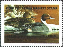 Ohio Duck Stamp 1995 Pintails