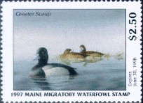 Maine Duck Stamp 1997 Greater Scaup