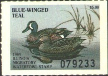 Illinois Duck Stamp 1984 Blue - Winged Teal