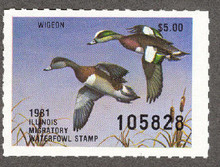 Illinois Duck Stamp 1981 American Wigeon XF Perforated 4 sides