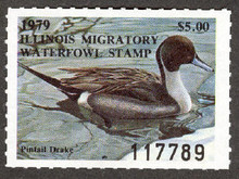 Illinois Duck Stamp 1979 Pintail XF Perforated 4 sides