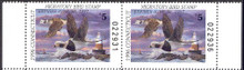 Connecticut Duck Stamp 1996 Old Squaw Hunter pair