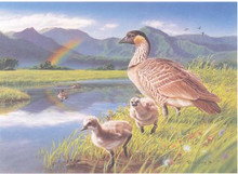 Hawaii Duck Stamp Print 1996 Nene Geese by Patrick Ching