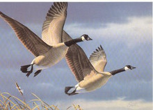 West Virginia Duck Stamp Print 1987 Canada Geese by Daniel Smith Exec Medallion Edition