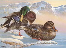 Washington Duck Stamp Print 1986 Mallards by Keith Warrick