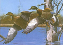New Hampshire Duck Stamp Print 1984 Mallards by Phillip Crowe