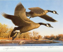 Colorado Duck Stamp Print 1990 Canada Geese by Robert Steiner Governor Edition