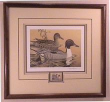 Arkansas Duck Stamp Print 1984 Pintails by Larry Hayden Framed