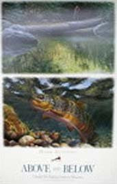 Above and Below Trout Poster by Mark Susinno
