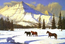 Winters Passage - Giclee Edition by Bob Peters