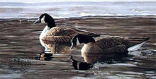 Break in the Ice - Canada Geese by Ron Parker