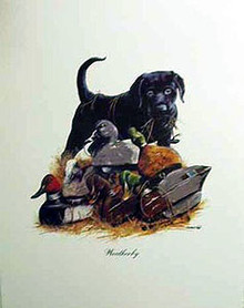 Weatherby ( Black Lab & Decoys ) - Open Edition by Phillip Crowe