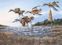 North Carolina Duck Stamp Print 1991 Blue- Winged Teal / Lighthouse by Phillip Crowe