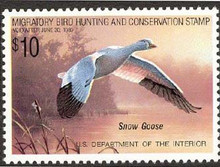 Federal Duck Stamp RW55 ( 1988 Snow Goose )