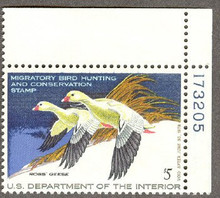 Federal Duck Stamp RW44 ( 1977 Ross Geese )