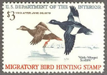Federal Duck Stamp RW36 ( 1969 Scoters )