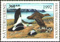 Iceland Duck Stamp 1992 Northern Eiders