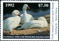 National Fish and Wildlife Duck Stamp 1992 Snow Geese