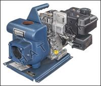 K1065 STA-RITE-EDPH C.I. PUMP 3 HP