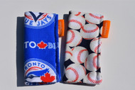 Blue Jays and Baseball 2 pack freezie cozy