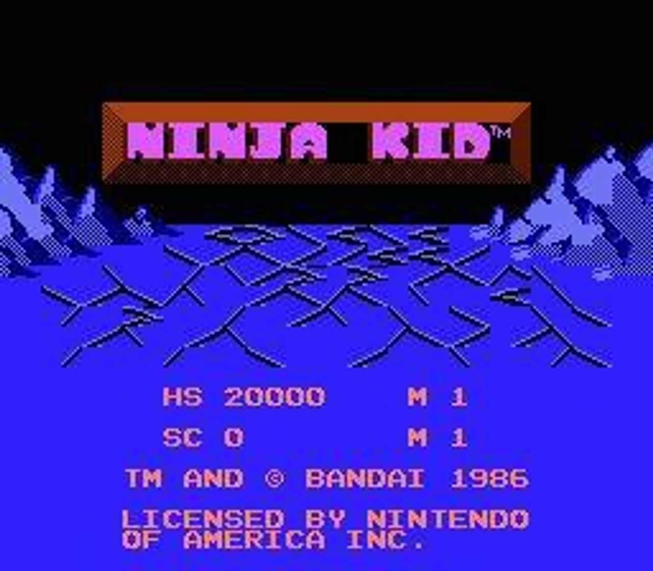 Nintendo NES Ninja Kid Video Game Cartridge