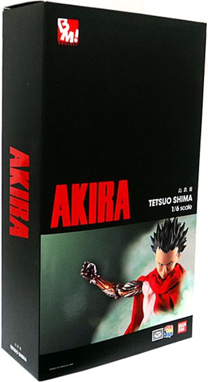 Akira Real Action Heroes Tetsuo Shima Action Figure