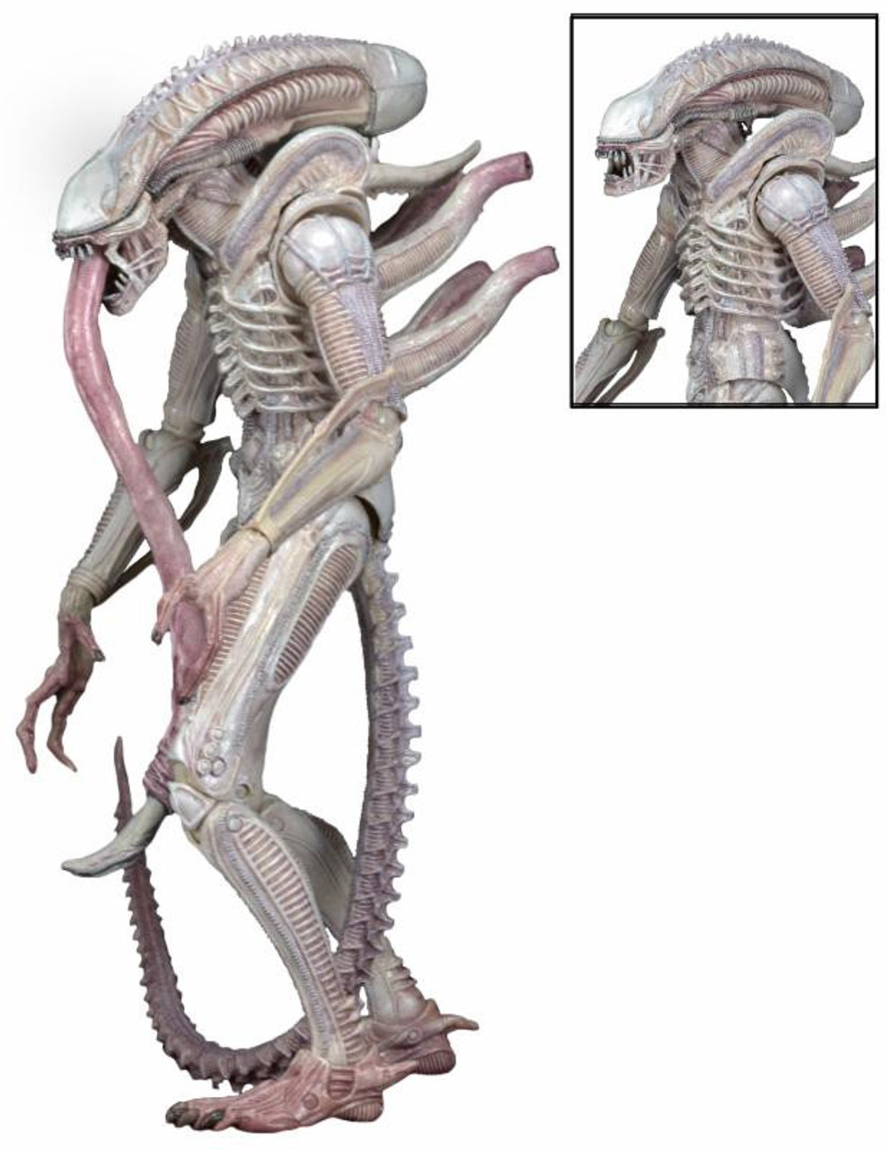 NECA Aliens Series 9 Xenomorph (Albino Drone) Action Figure