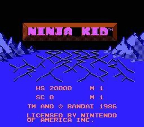Nintendo NES Ninja Kid Video Game Cartridge