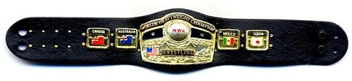 NWA Wrestling Loose NWA World Heavyweight Belt Action Figure Accessory