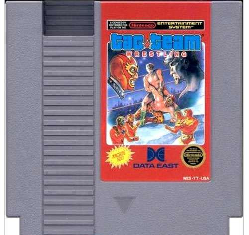 Nintendo NES Tag Team Wrestling Video Game Cartridge [Played Condition]