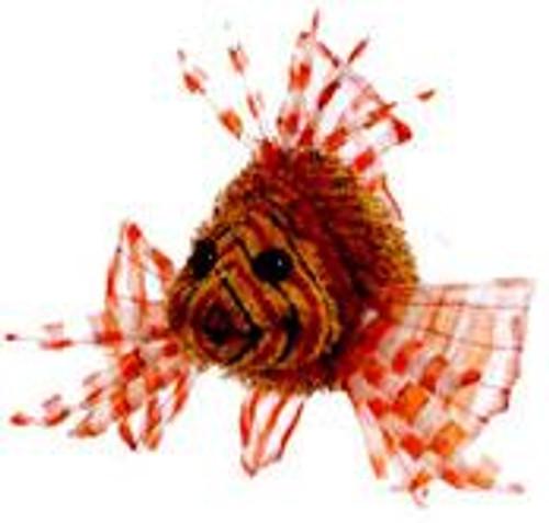 Webkinz Lion Fish Plush