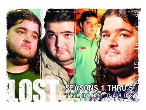 Lost Seasons 1-5 Trading Card Box