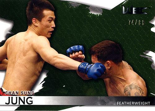UFC 2010 Knockout Parallel Chan Sung Jung #116