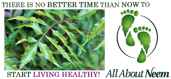 All About Neem Queen Healthy Living New Year Detox Cleanse Capsules products