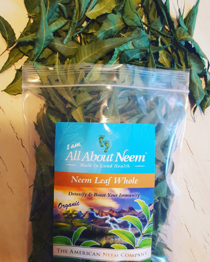 Organic, Natural, Fresh Neem Leaves- Whole Leaf