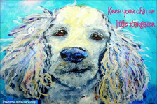 Poodle- Keep your chin up...