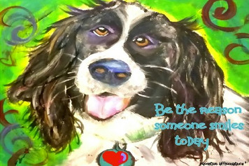 Springer Spaniel- be the reason