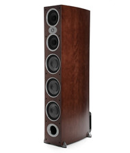 Polk Audio RTIA9-CH