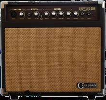 Carlsbro Sherwood 20R 20W Acoustic Guitar Amplifier