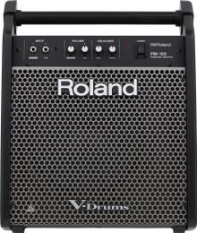 Roland PM-100 80 Watt V-Drums Personal Monitor Speaker