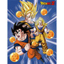 Dragon Ball Z: Goku Three Forms with Dragon Ball Sublimation Throw Blanket