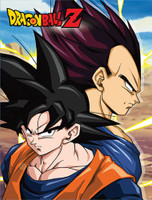 Dragon Ball Z: Goku and Vegeta Sublimation Throw Blanket