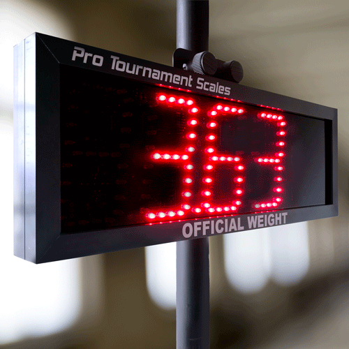 4 inch LED Display